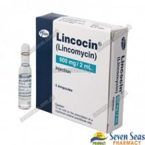 LINCOCIN INJ 600MG (5X2ML)